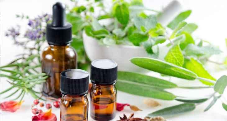 """A medicina natural não é a """"alternativa"""" - durante a maior parte da história humana, foi o único medicamento"""